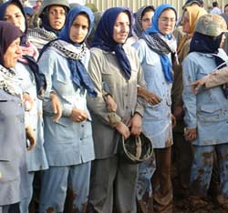 العربية: عناصر خلق في ليبرتي يضربون عن الطعام