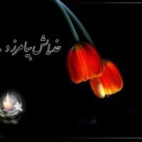 عرض تسلیت انجمن نجات لرستان به خانواده محترم سعیدی