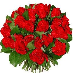 تبریک رهایی امید قادر مرزی، محمد کاظمی، منوچهر  محمدی، محمد صادق ظهری