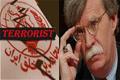 John Bolton Shockingly Denies Being a 'Terrorist Supporter'